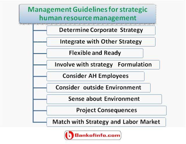 Management Guidelines For Strategic Human Resource Management Human Resources Human Resource Management Management