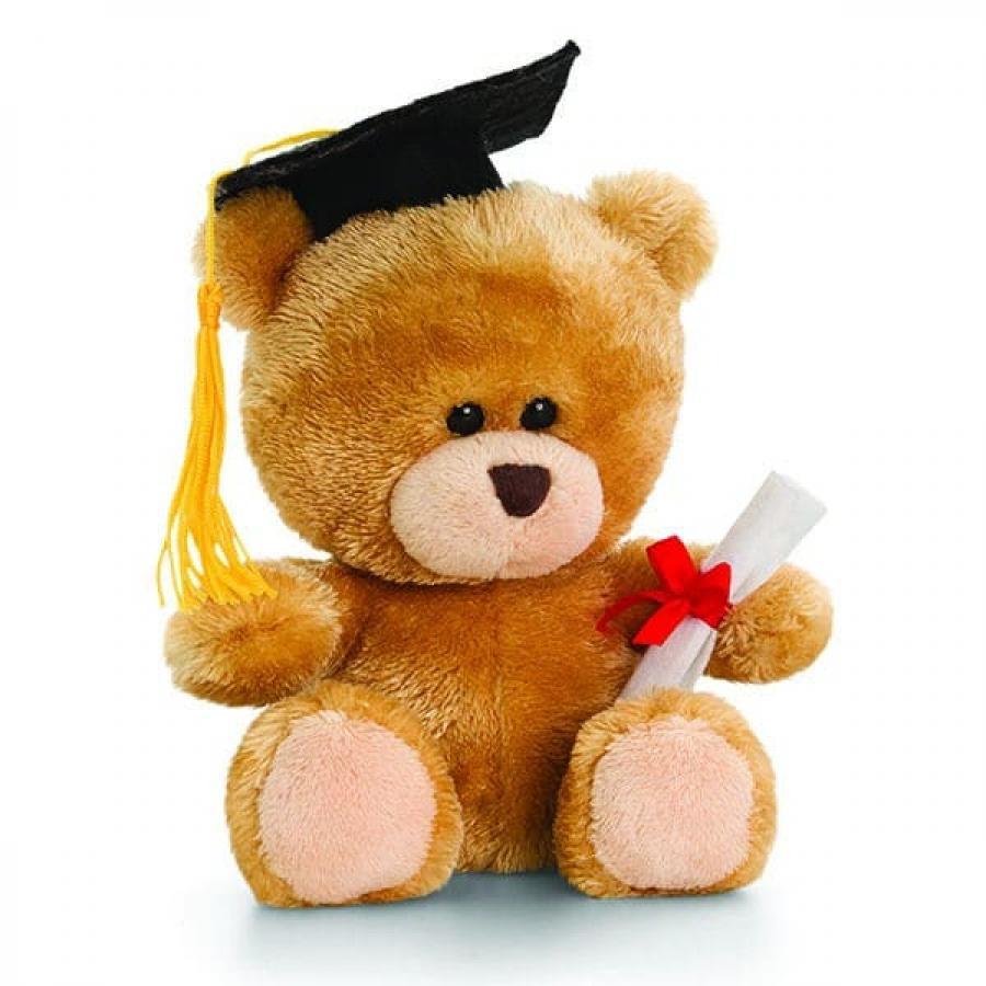 Hot Sell Graduation Teddy Bear Adorable Diploma Stuffed Toy Plush Gift