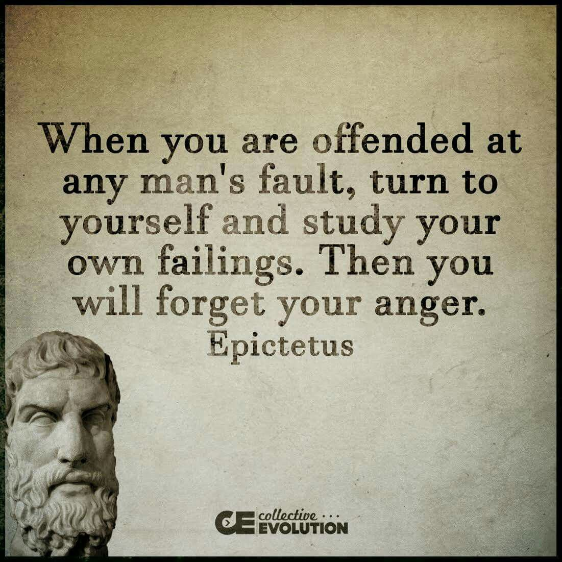 Pin by Jason Rowlette on Natural Law | Stoic quotes ...