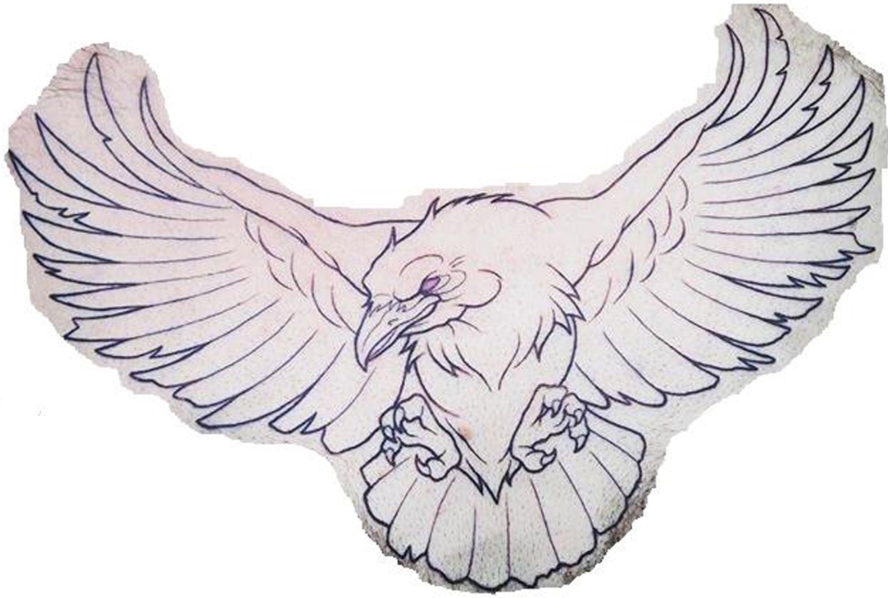 Aguila Feather Tattoos Tattoo Sketches Bird Sketch