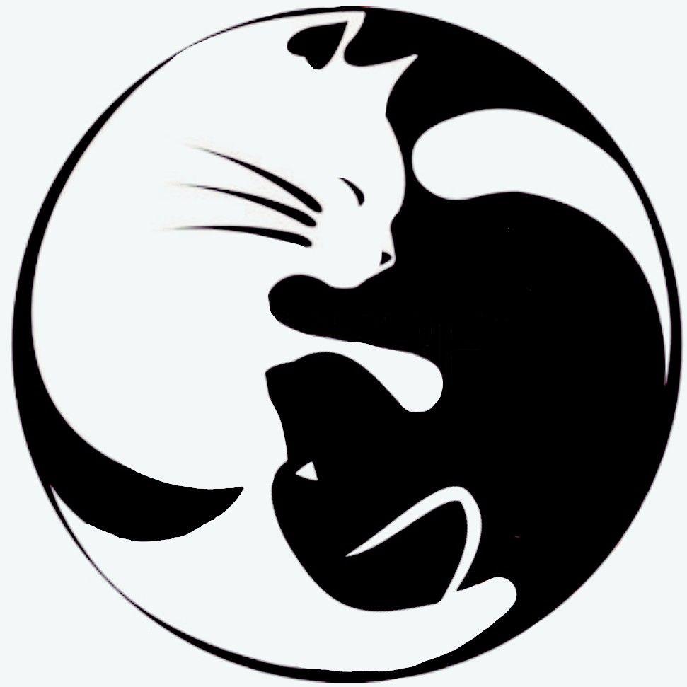 Cat Dog Tatoo Cat Tattoo Yin Yang Tattoos Cat Art