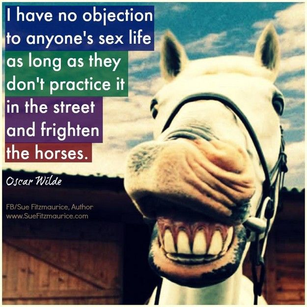 No Objection 4a laugh My Humor Pinterest Humor - i have no objection