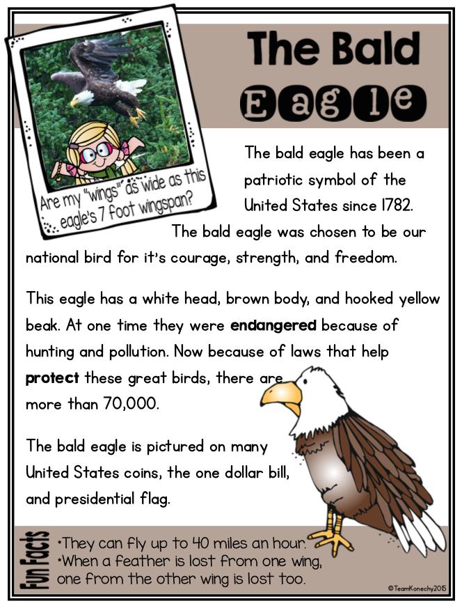 American Symbols Reading Passages American Symbols American Symbols Kindergarten American Symbols Unit