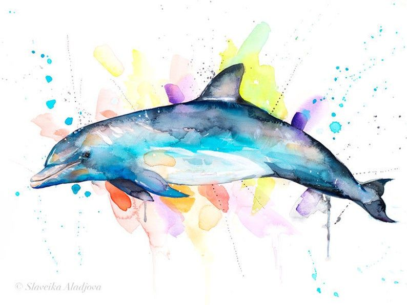 Bottlenose Dolphin Watercolor Painting Print By Slaveika Etsy Dolphin Painting Dolphin Drawing Dolphin Art