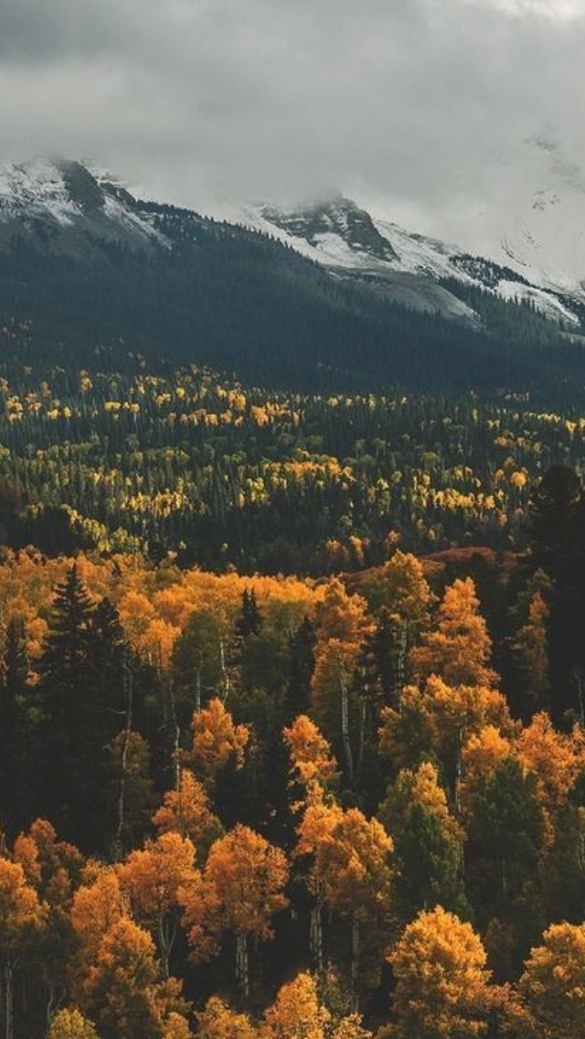 Autumn Mountains Images Fall Mountain Pictures Fall Mountain Pics Scenery Wallpaper Beautiful Scenery Wallpaper Autumn Landscape
