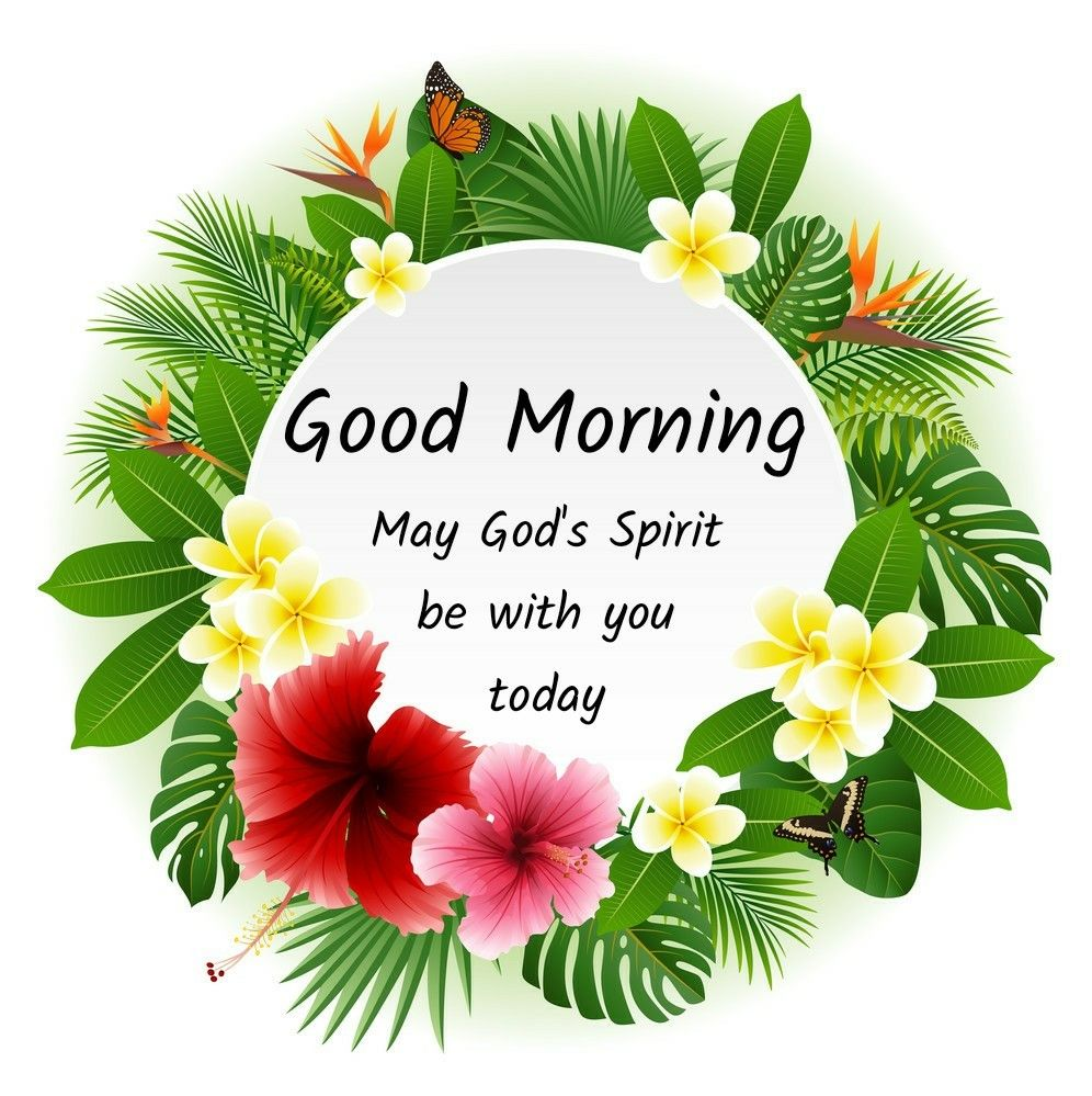Good Morning Good Morning Quotes Good Morning Friends Quotes Morning Greeting