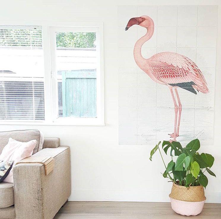 Pretty Flamingo IXXI! Get more inspiration at www.ixxidesign.com ...
