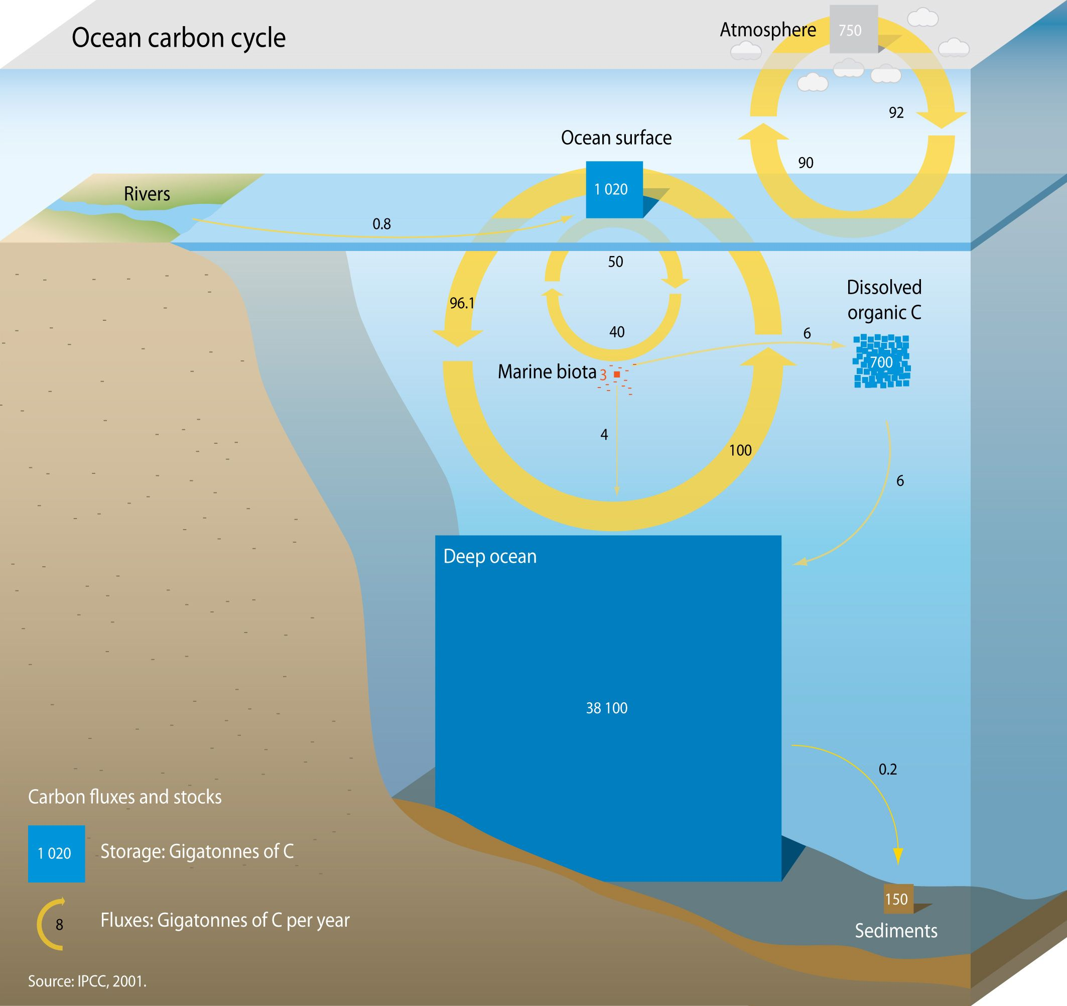 Carbon Sink A Natural Or Artificial Reservoir That Accumulates