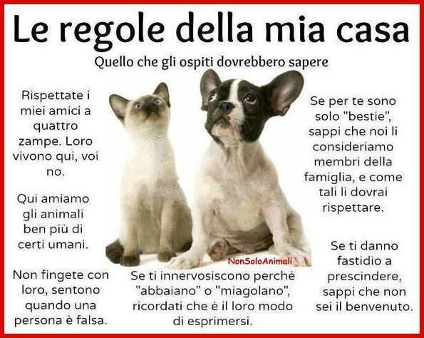 film italiani sexy massaggio sexy torino