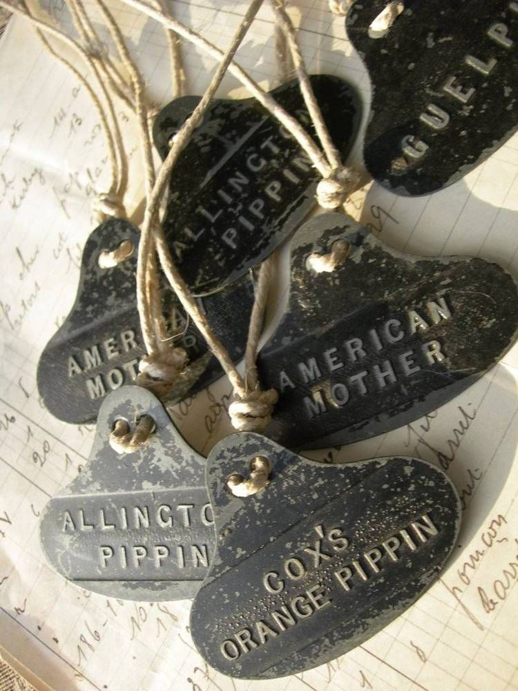 6 Antique Victorian Metal Tree Plant Labels Scottish Country House Orchard Orchard Tree Variety Of Fruits Tree