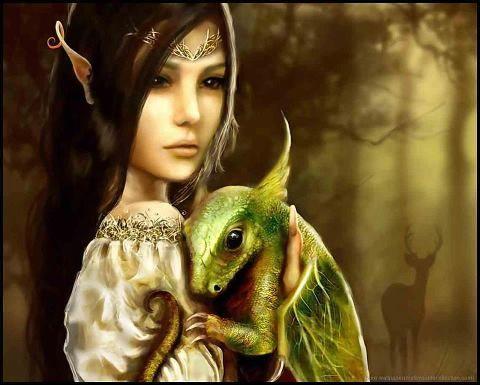 dragon and elf*