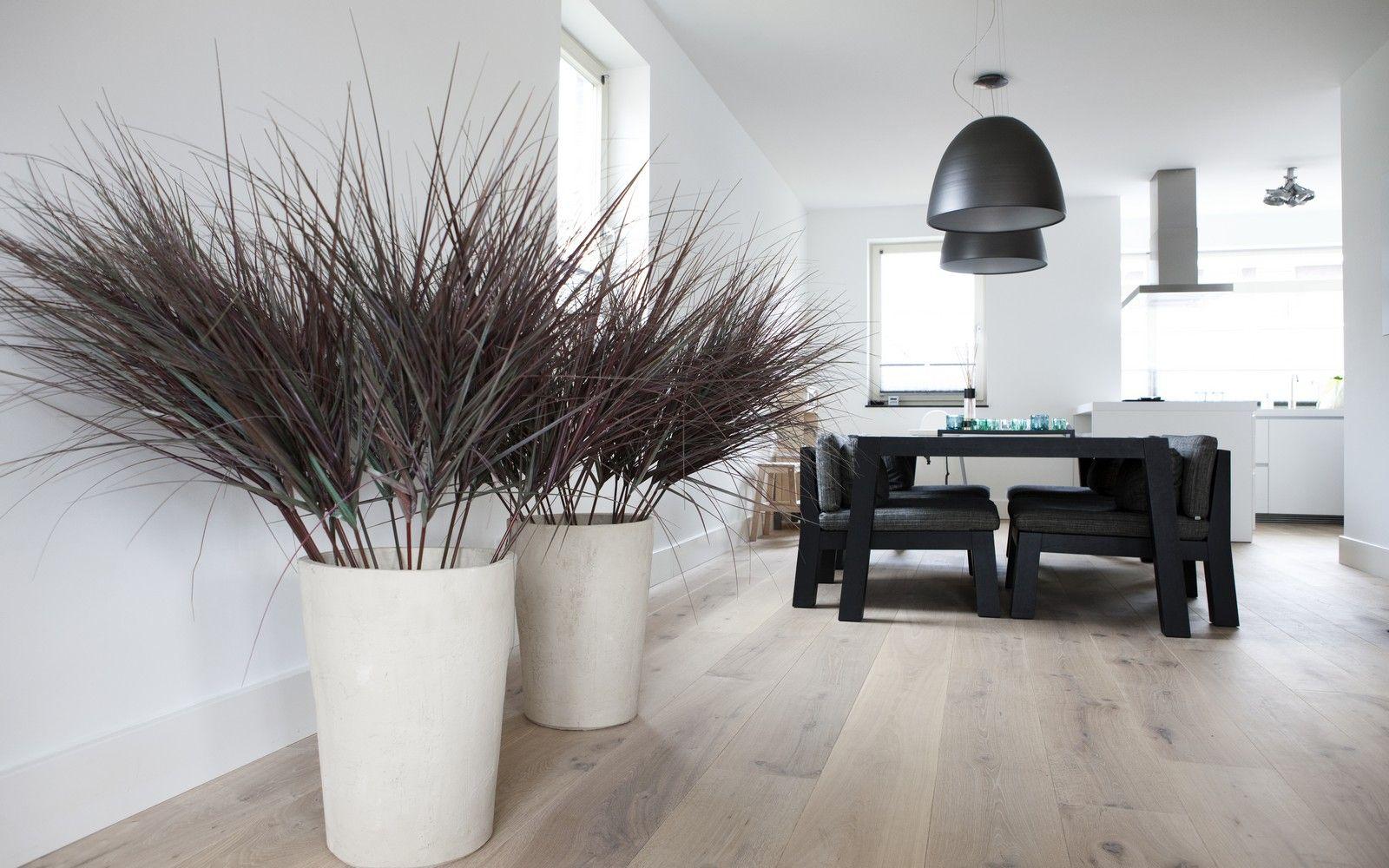Foto 39 s van houten vloeren uipkes houten vloeren uipkes for Interieur vloeren