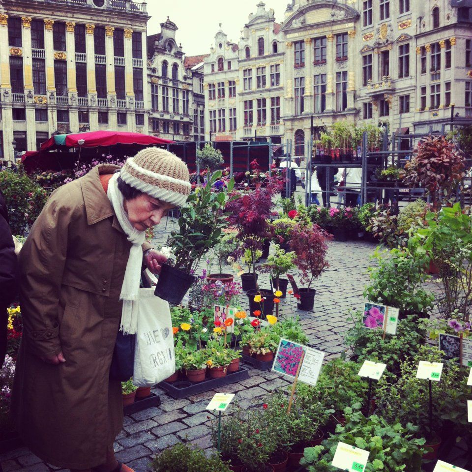 in Bruxelles (my own photography)