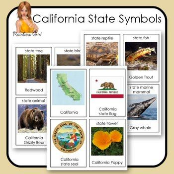 California State Symbol Cards Rainbow Girl Tpt Printables