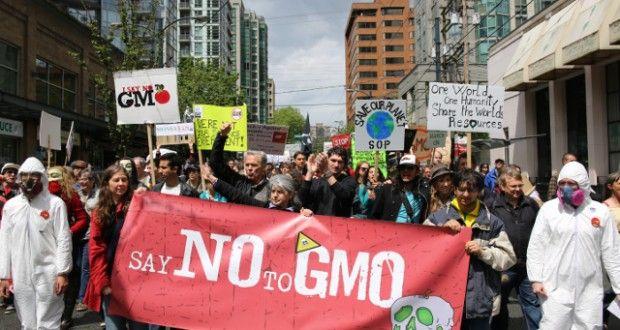 Monsanton historia: maailman pahamaineisin yhtiö tarkastelussa   Magneettimedia