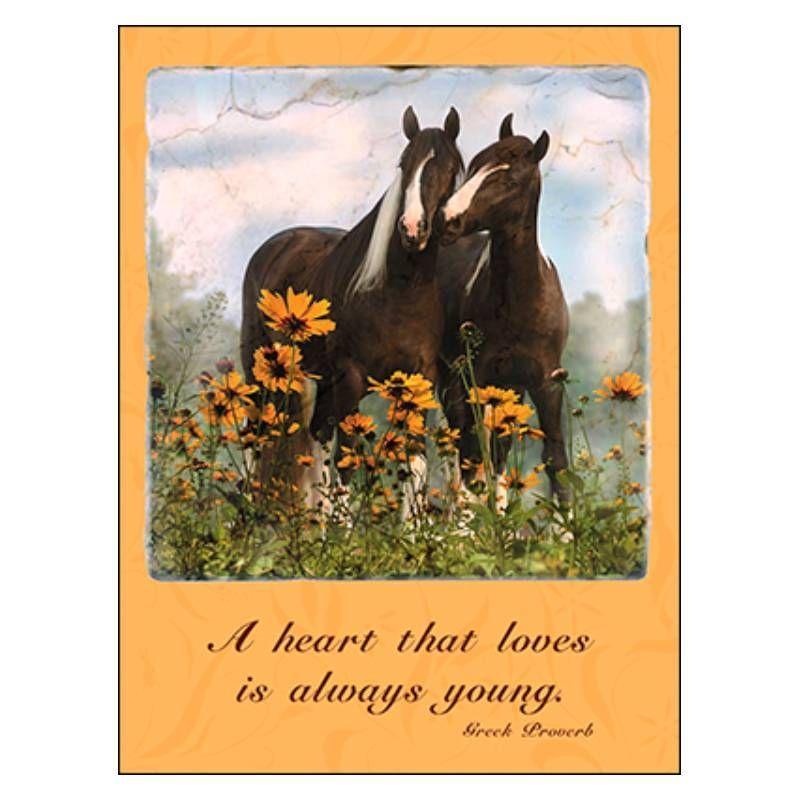 Leanin tree horsey love anniversary card anniversary cards