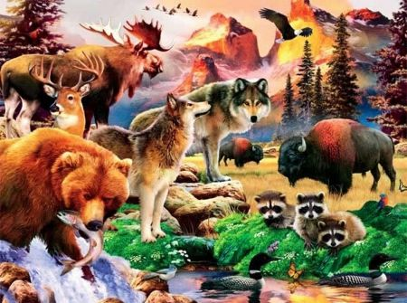lots of animals together - Google Search | Neuhaus DMS ...