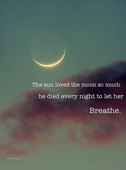 The Sun Loved The Moon So Much He Died Every Night To Let Her