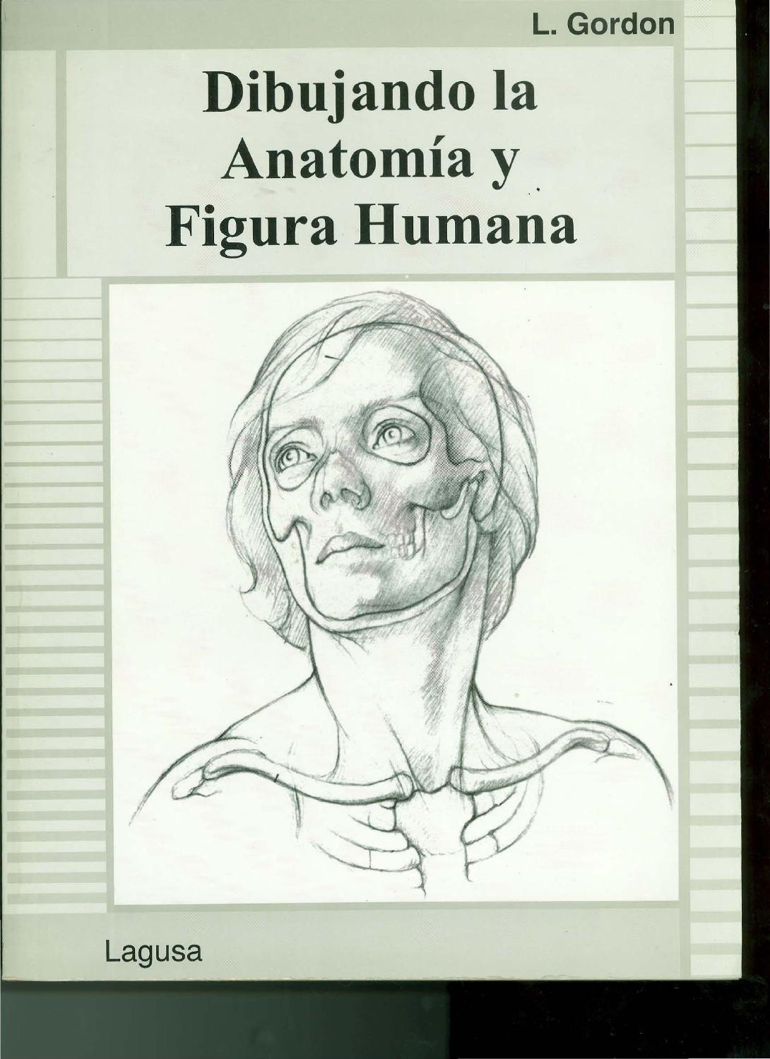 Dibujando la anatomia y figura humana | Figuras humanas, Anatomía y ...