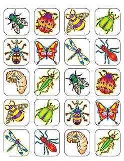 Para recortar e imprimir insectos y artr podos pinterest animales en dibujos im genes de - Fotos de insectos para imprimir ...