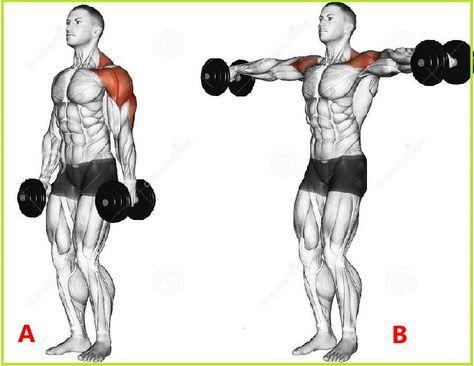 pinalexander on shouder  push workout shoulder