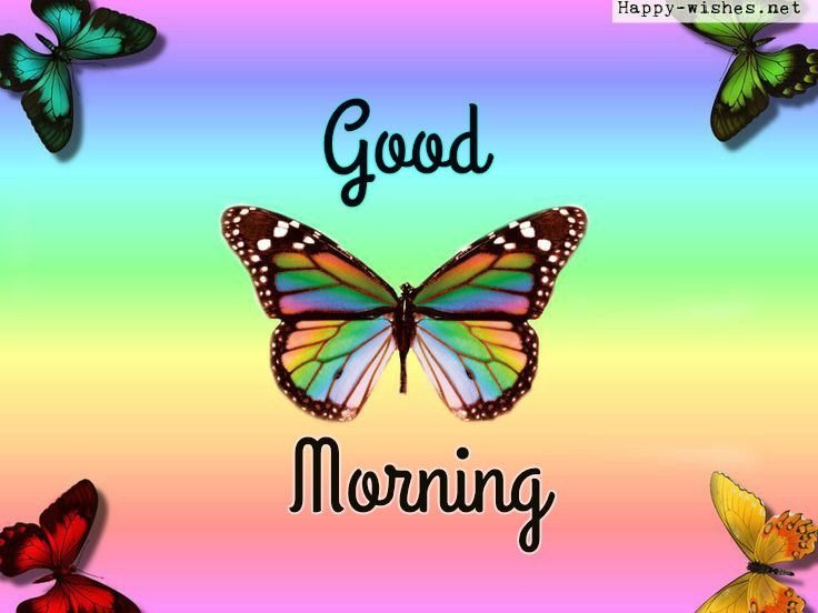 Rainbow Butterfly Good Morning Images Channabeeraiah Good