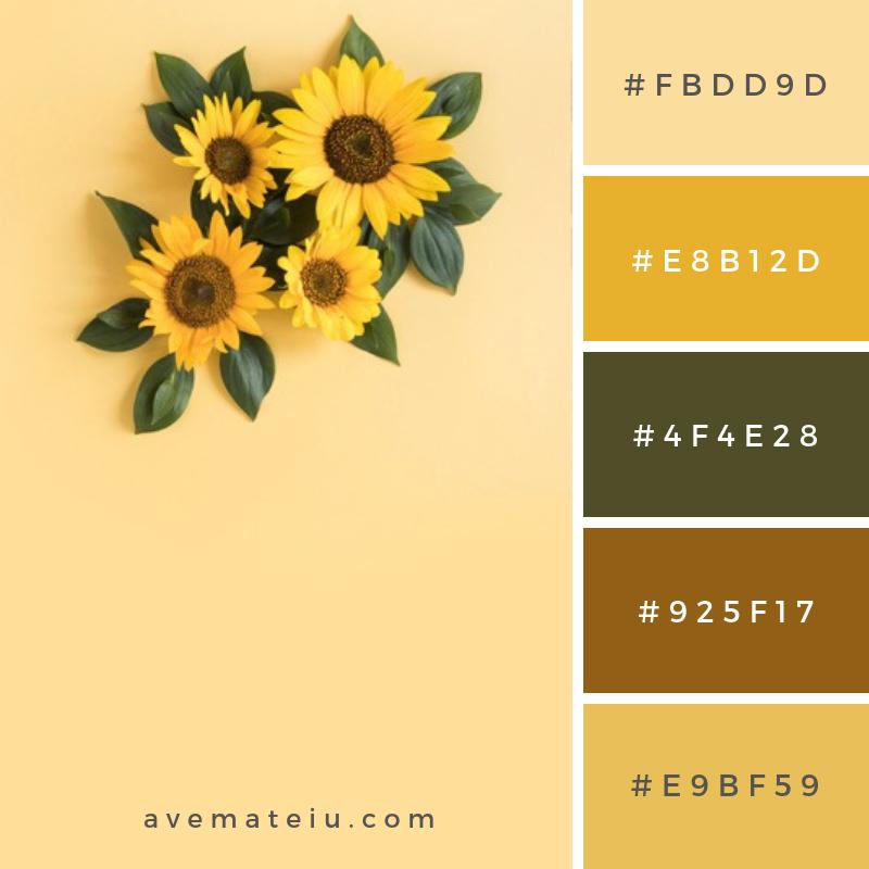 High Angle View Of Beautiful Sunflower On Yellow Surface Color Palette 305 Color Palette Yellow Color Palette Design Color Schemes Colour Palettes