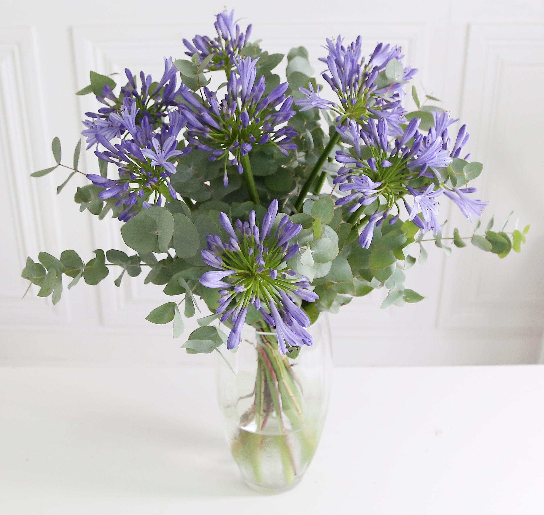 Agapanthus Bouquet 5 X Purple Lisianthus 8 X White Avalanche Rose 3 X Blue Agapanthus And Salal Foliag Beautiful Bouquet Of Flowers Flowers Bouquet Flowers Uk