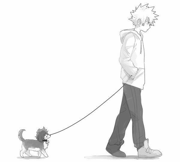 Bakugou Kacchan Katsuki Walking Dog Puppy Cute My Hero Academia Hero My Hero My Hero Academia