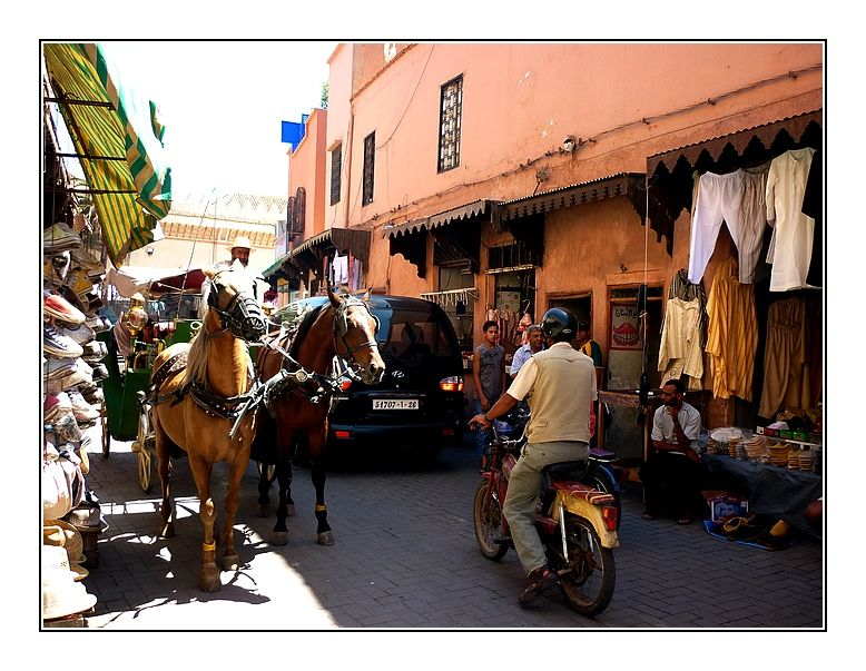 Streets of Marrakech in a caleche
