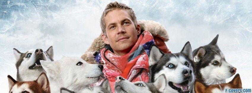 Eight below dog movies paul walker movies paul walker