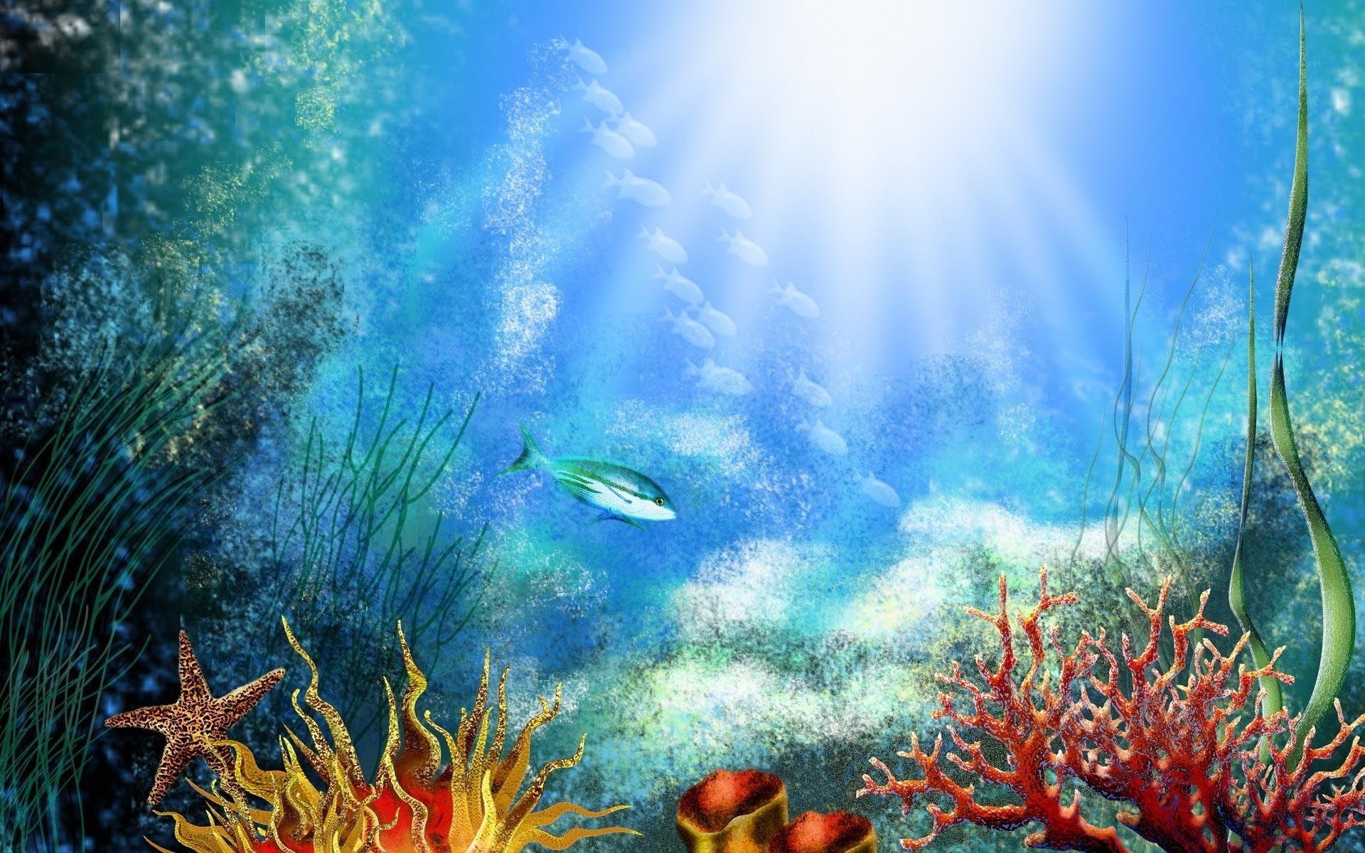 Rays Of Light Fish Underwater World Corals Animals X