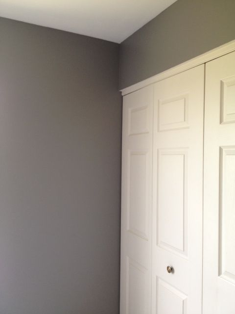 Dream paint color anonymous by behr perfect gray no for Perfect blue grey paint color