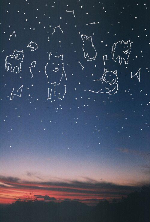 sky is the limit Pinterest'te | Galaksiler, Samanyolu ve Ay hakkında 1000'den fazla görüntü