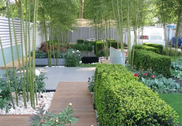 Photo of Amazing Summer Garden Landscaping With Bamboo Ideas