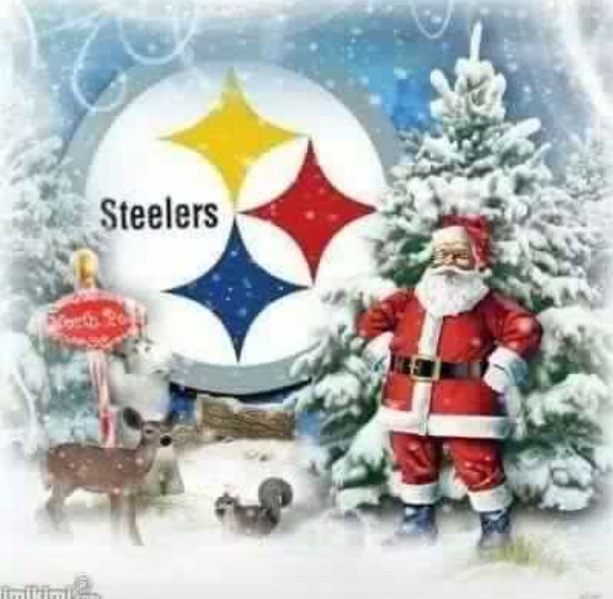 Pin by Bonnie Mehal on STEELERS (With images) | Christmas ...