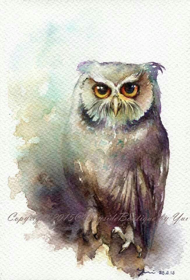 Owl Look At You Aquarelle De Hibou Hibou Dessin Et Aquarelle