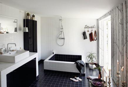Zwarte Tegels Badkamer : Zwarte badkamer met beroemd kunstwerk aan plafond beroemd
