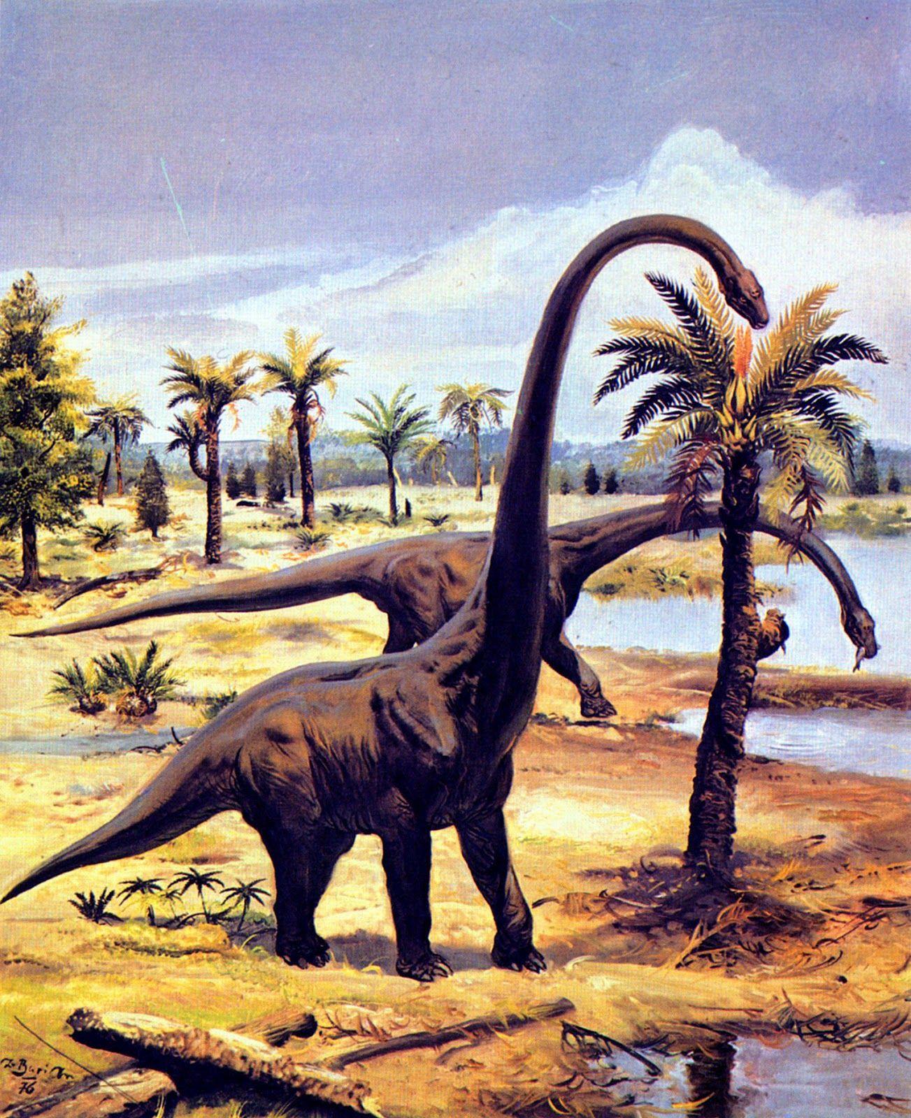 "Barosaurus Illustration by Zdenek Burian, 1976 ""A"