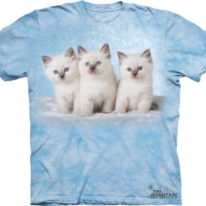 10 Chatons Chats T-Shirt Adulte Unisexe The Mountain