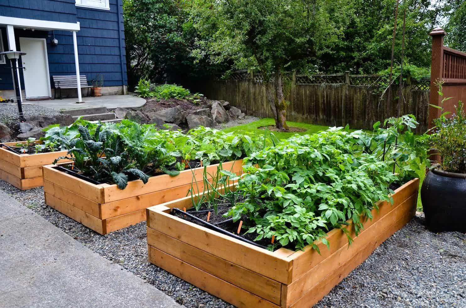 Home vegetable garden design  Smalln Winter Vegetables Design Plans Vegetable To Grow Easy In