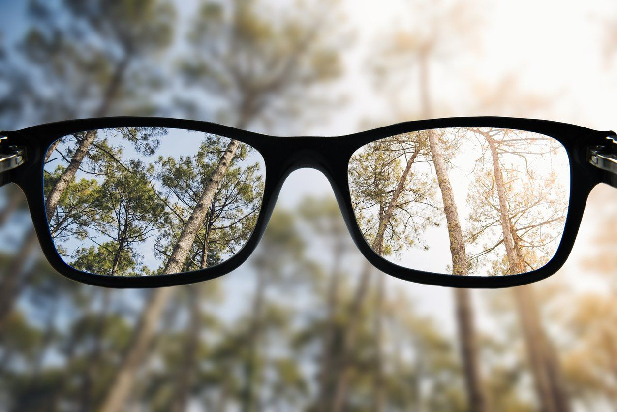 fd7d0d58cc Progressive lenses create a whole new experience for how you see everything  around you