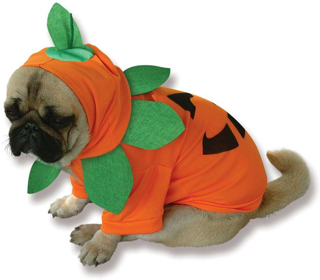 Pumpkin Pooch Dog Costume Small Dog Halloween Costumes Dog