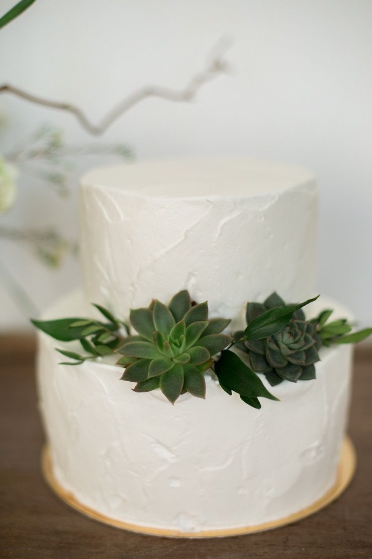 Succulent on white wedding cake | fabmood.com #wedding #weddingstyledshoot #weddingphotos #weddinginspiration #weddingphotography #fineartwedding #fairytalewedding
