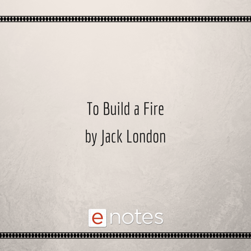 Latest HD To Build A Fire Quotes