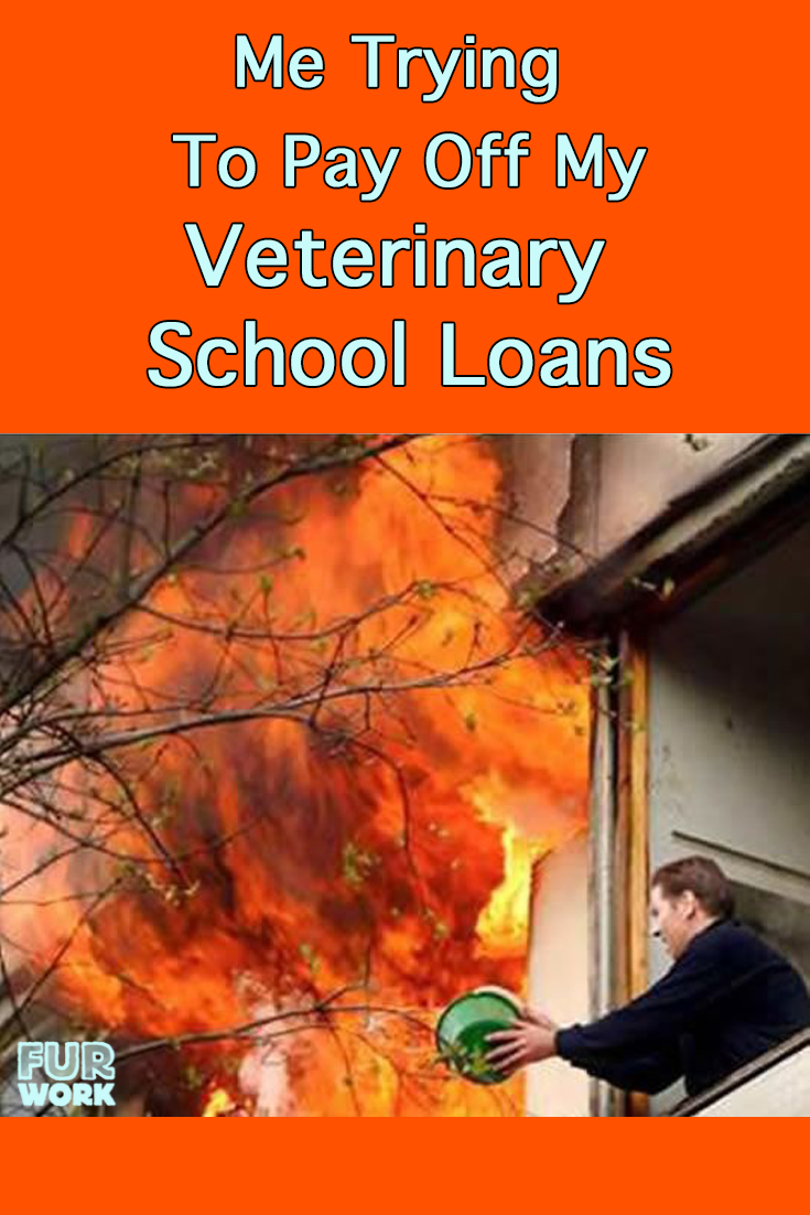 Furwork Original Veterinarian Work Humor Furwork Veterinarian School Student School Loans Veterinary School