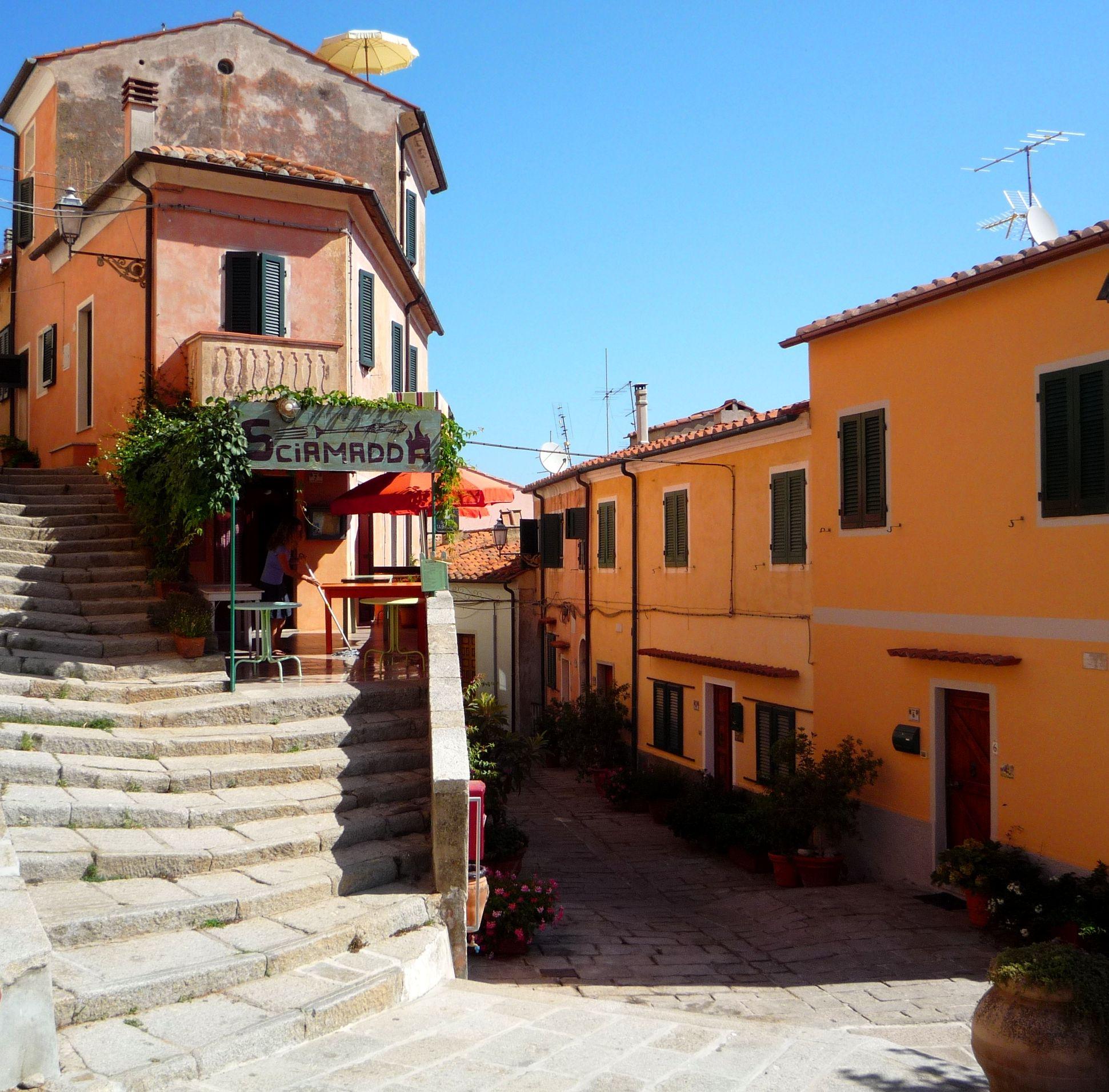 Isola d'Elba 풍경화, 유화