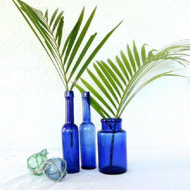Sweet trio of #vintage #bluebottles/jar. Castor oil once filled the bottles. Perfect #coastalhomedecor $45 if interested email hello@coastalvintage.com.au or on website later today. #coastalvintage #coastaldecor #vintagebottles #coastalhome #Padgram