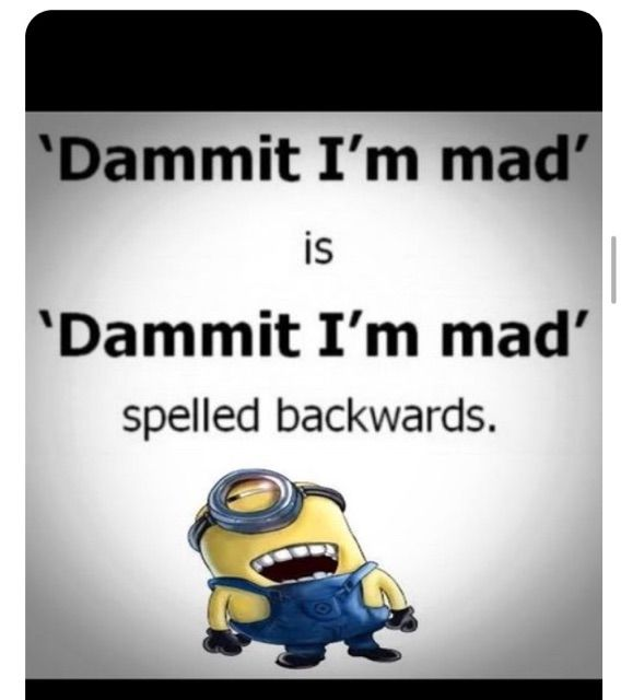 Favorite (I Love These Guys) Minion Quotes