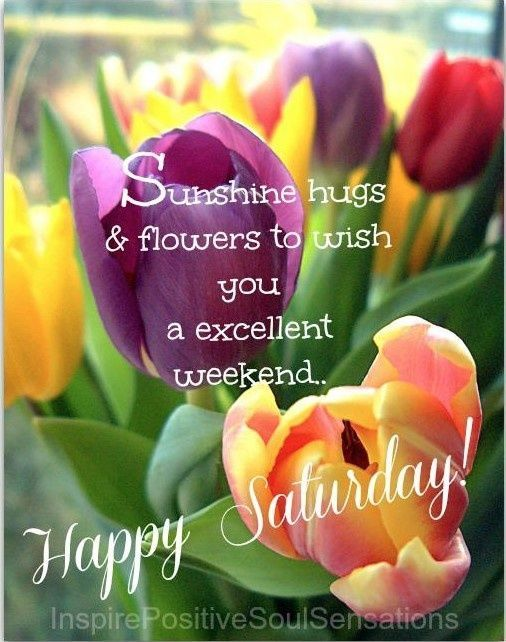 Happy Saturdayshunshine Hugs Flowers To Wish You A Excellent